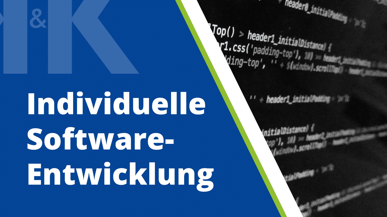 Software: Individual oder Standard?