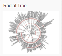 echart_radial tree